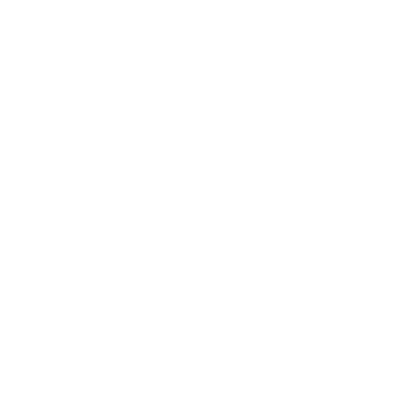 Top Dragon